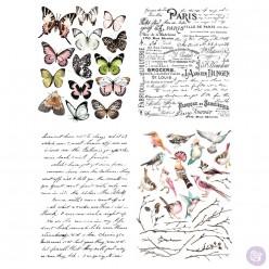 Parisian Butterflies 56x76