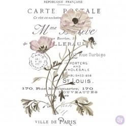 Carte Postale 91.95x60.96