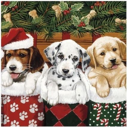Servilleta doggies