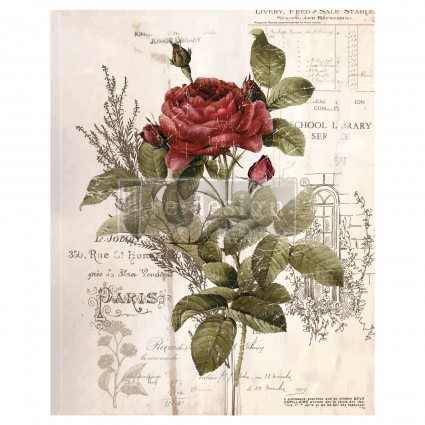 Botanical Rose 66,04 x 81,28cm  transfer Deco