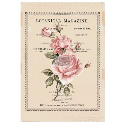 Beautiful Botanist 66,04 x 81,28cm re.design Decor Transfers