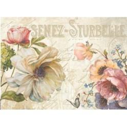 Papel Arroz soft 30 x 41 Senez-Sturbelle