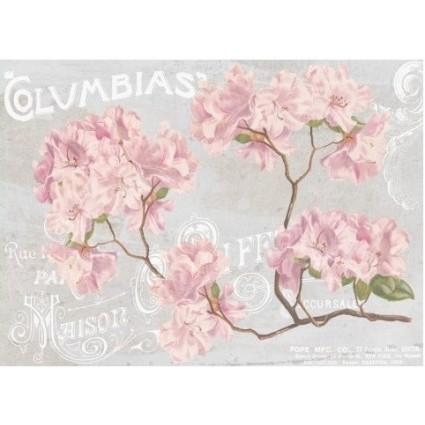Papel Arroz 30 x 41 Columbias Rododendros