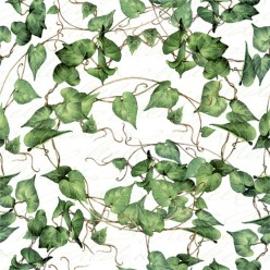 SERVILLETA 33X33CM GREEN IVY BRANCHES